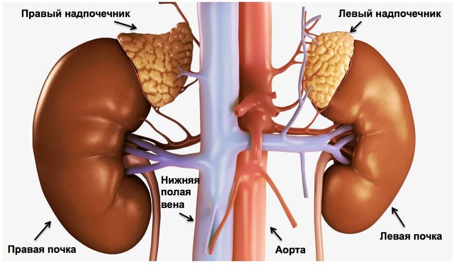 Опухоли надпочечника